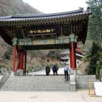 Der Guinsa Tempel ist noch sehr jung (gegründet 1945).