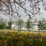 Im Hintergrund: der Han-Fluss.