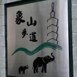 Der Elephant Mountain liegt mitten in der Stadt.