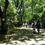 Auf dem Weg zum Tempel durchquert man einen Park.