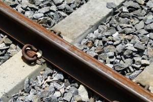Die Gleise werden offensichtlich schon seit Jahren nicht mehr genutzt.