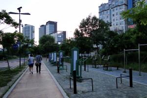 Öffentliche Sportgeräte sieht man in Korea oft.