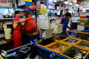 Einer der Fischmärkte ...