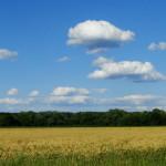 ... diesen blauen Himmel habe ich vermisst!